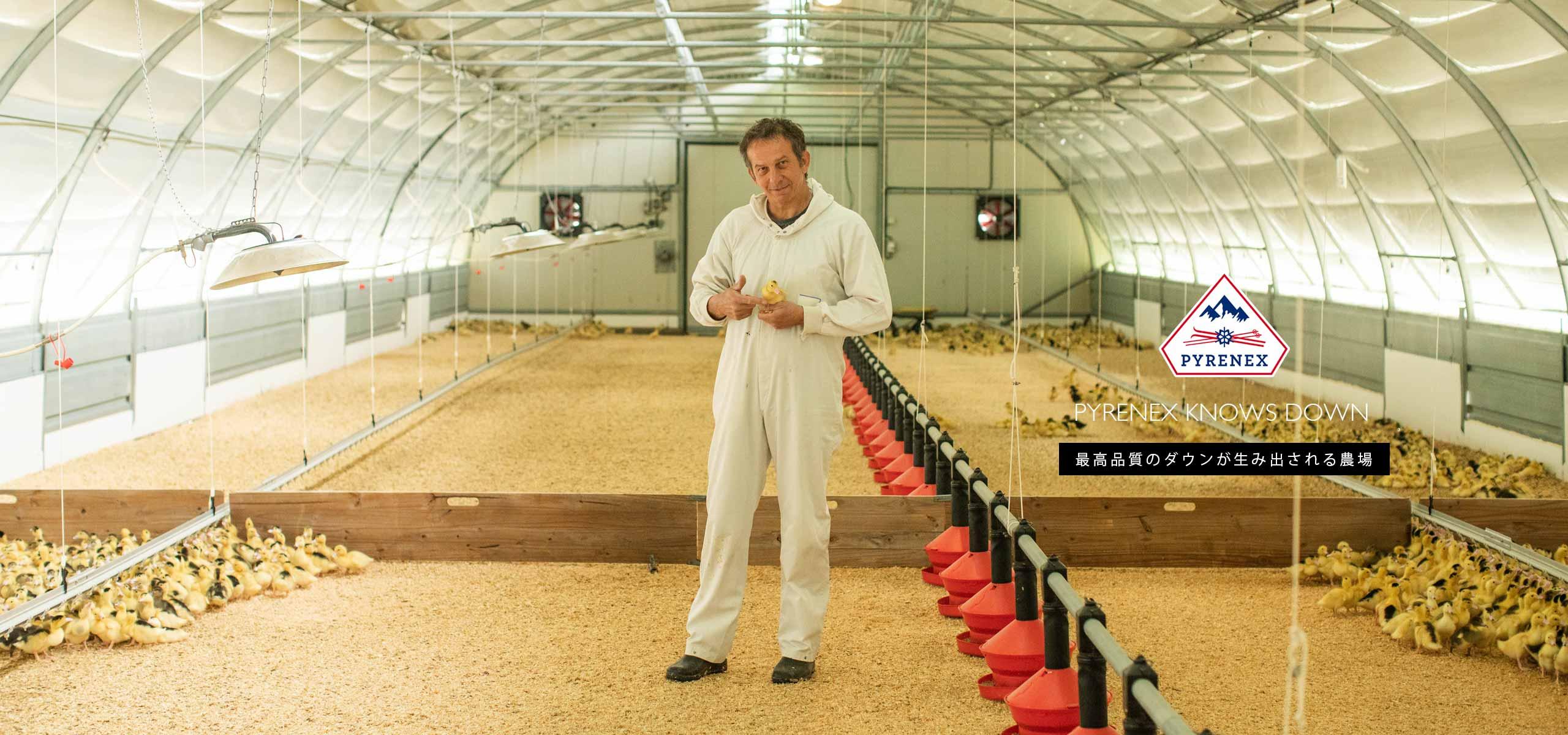 最高品質のダウンが生み出される農場 -PYRENEX KNOWS DOWN-